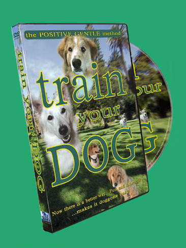 Train Your Dog - DVD